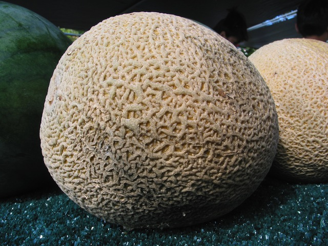 Cantaloupe from Jensen Farms was identified as the cause of the listeria outbreak.